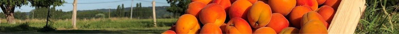 Nouveautés en fruits et légumes