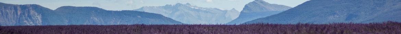 Notre Sélection -  À la découverte de la Provence !
