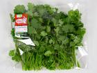 La Boite à Herbes - Coriandre Fraîche - Sachet 50g