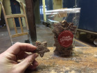 Moulins de Versailles - Biscuits Étoiles Chocolat Noisette - 150g