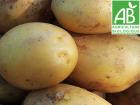 Mon Petit Producteur - Pomme De Terre Primeur Anaïs Bio