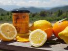 Monsieur Appert - Citron/orange Corse Mille Feuille Agrumes Par Sonia Ezgulian