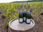 Champagne Deneufchatel - Champagne Deneufchatel Millésime 3 X 75 Cl