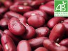 Mon Petit Producteur - Haricot Rouge Bio [500g]