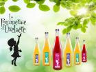La Pommeraie d'Oxelaëre - Assortiment De Jus De Fruits Et Thé 6 Bouteilles