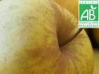 Mon Petit Producteur - Pomme Belchard Bio - 3kg