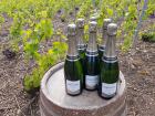 Champagne Deneufchatel - Champagne Deneufchatel Millésime 6 X 75 Cl