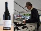 Oé - Coffret de 6 Nuits-Saint-Georges Bio AOC, Les Grandes Vignes, Sylvain Loichet, millésime 2015