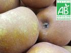 Mon Petit Producteur - Pomme Reinette Grise Du Canada Bio - 3kg
