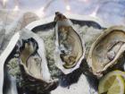 Les Huîtres Courdavault Alain & Fils - Fines De Claires Marennes Oléron n°0 - 24 huîtres