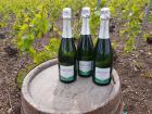 Champagne Deneufchatel - Champagne Deneufchatel Brut Tradition 3 X 75 Cl