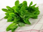 La Boite à Herbes - Menthe Fraîche - Sachet 100g