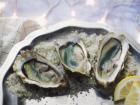 Les Huîtres Courdavault Alain & Fils - Fines De Claires Vertes Label Rouge n°3  - 48 huîtres
