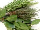 Les Herbes du Roussillon - Mixte Thym Laurier Romarin Frais