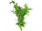 Les Herbes du Roussillon - Estragon Frais