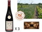 Le Clos des Motèles - AOC Anjou Rouge 2017 : Cuvée du Toarcien 3 bouteilles