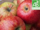 Mon Petit Producteur - Pomme Jonagored Bio - 3 Kg