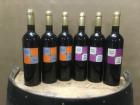 Vignobles du Sourdour - Nos Vins Igp Charentais - Lot De 6 Bouteilles