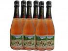 Champagne J. Martin et Fille - Cuvée Des Amoureux De Peynet Brut Rosé X6