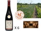 Le Clos des Motèles - AOC Anjou Rouge 2017 : Cuvée du Toarcien 6 bouteilles
