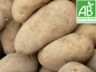 Mon Petit Producteur - Pomme De Terre Charlotte- Variété À Chair Ferme