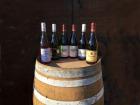 Domaine Christophe et Daniel Rampon - Coffret Découverte Des Vins Du Beaujolais 6x75cl