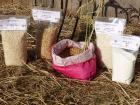 """Les Délices du Scamandre - Riz Bio Semi-Complet """"Manobi"""" IGP Riz de Camargue - 1 kg"""