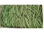 Valentin Grain - Fruits et légumes Conversion Bio - Haricot Vert Bio 500g