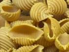 L'Atelier à Pâtes - Pâtes Conchiglie Rigate Au Curry De Madras Bio