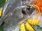 Poissonnerie Le Marlin - Dorade Royale - 1,2kg - Vidée Et Écaillée