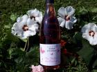 Domaine Sophie Joigneaux - IGP Rosé Sainte-Marie La Blanche 3x75cl Millésime 2018