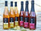 Didier Goubet - Lot de 6 bouteilles de 75cl