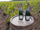 Champagne Deneufchatel - Champagne Deneufchatel Millésime 2 X 75 Cl