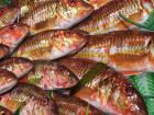Poissonnerie Le Marlin - Rouget - 1kg