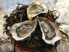 Huîtres Le Priol - Huîtres Creuses De Bretagne N°3 - Bourriche De 50