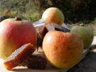 Terres En Vie - Pâtes de fruits à la Pomme Bio