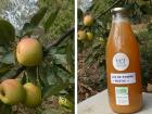 Terres En Vie - Jus De Pommes Bio «rustic» Variétés Anciennes