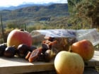Terres En Vie - Pâtes de Fruits à La Châtaigne et à la Pomme Bio