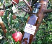 Le Châtaignier - Vinaigre de cidre