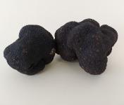 ALENA la Truffe d'Aquitaine - Truffe Noire Du Périgord Fraiche Tuber Melanosporum - 1ère Catégorie - 100g