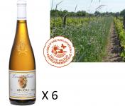 Le Clos des Motèles - Aoc Anjou Blanc Sec 2019 : Cuvée Plaisir. 6 Bouteilles