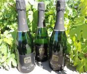 Domaine des Bourrats - Méthode Traditionnelle Blanc de Blancs - 3 bouteilles