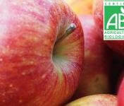 Mon Petit Producteur - Pomme Ariane Bio - 1kg