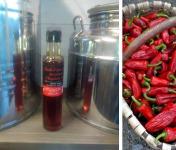 BIPER XOKOA - Huile d'Olive Bio au Piment d'Espelette Bio - bouteille de 25cl