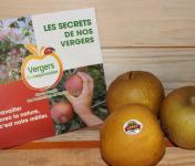 Le Châtaignier - Pommes Bertanne - Colis 8 Kg