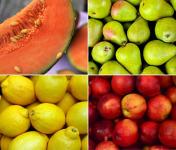 Nos cousins Conserverie - Assortiment De Sorbets Jaunes: Melon, Poire, Nectarine Jaune Et Citron (4x600ml)