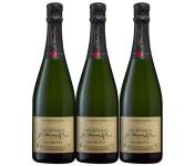 Champagne J. Martin et Fille - Brut Tradition - 3x75cl
