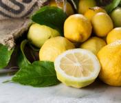 La Maison du Citron - 8kg Citrons de Menton IGP