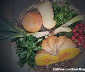 Les Jardins de Champlecy - Panier De Légumes De Saison 5kg