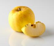 Les Côteaux Nantais - Pomme Opale AB&Demeter